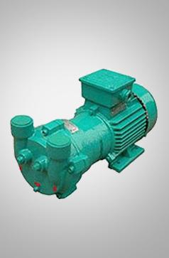 2BV2水环真空泵