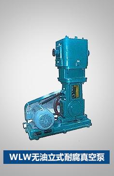 WLW无油立式耐腐真空泵