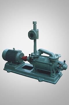 2SKP1水环真空泵