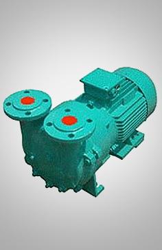 2BV5水环真空泵
