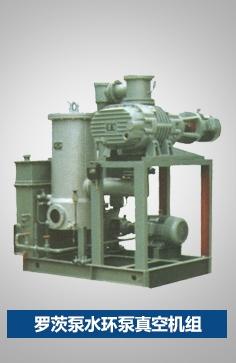 罗茨泵水环泵真空机组