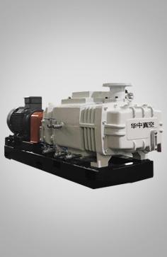LGB系列螺杆真空泵