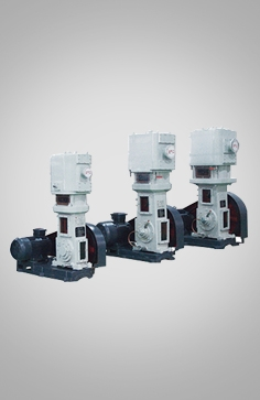 WLW系列无油立式往复泵